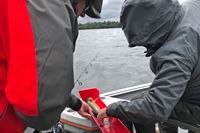 image of paul and susan measuring walleye