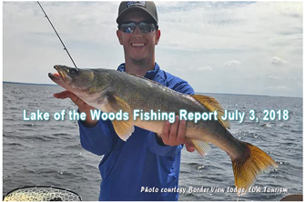 image of big walleye caught on lake of the woods