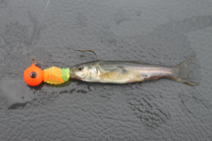 image of crappie lure