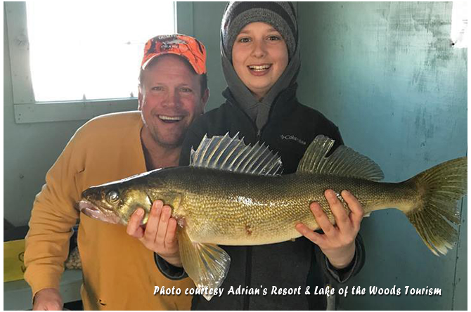 Minnesota ice fishing reports archive january 2018 for Morris point lake of the woods fishing report