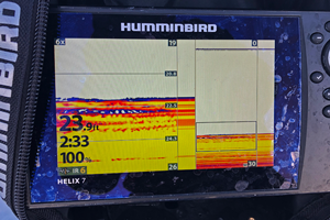 image of crappies on screen of ice helix 7