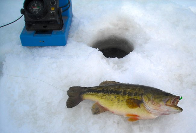 Fishing reports minnesota fishing guide report walleye for Ice fishing for bass