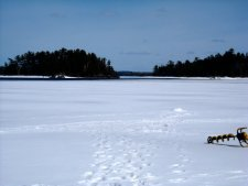Ice Fishing Rainy Lake