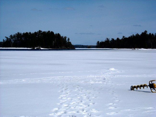 Mn fishing report deer river grand rapids for Rainy lake fishing