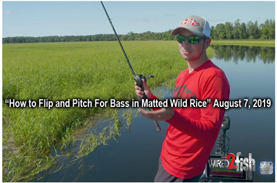 Minnesota Fishing Info Fish Reports Articles Videos