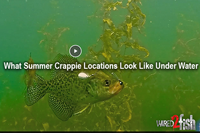 image links to video about crappie fishing