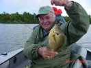 Dick grins like a kid over Bluegills like this