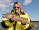 Julie always catches fish like this great Cass Lake Walleye