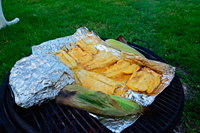 image of grilled Northern Pike