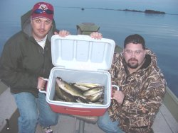 image of anglers with limits of walleye